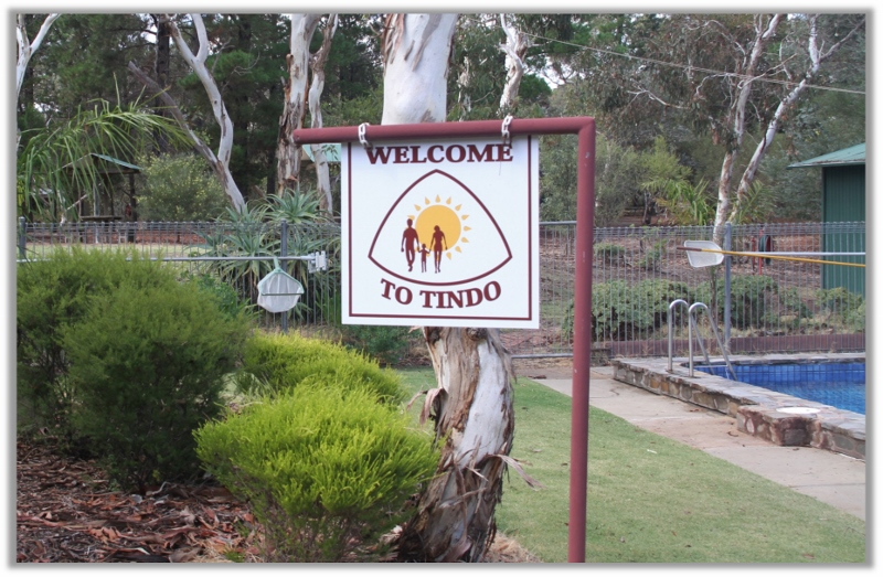 Tindo_Welcome_800x523